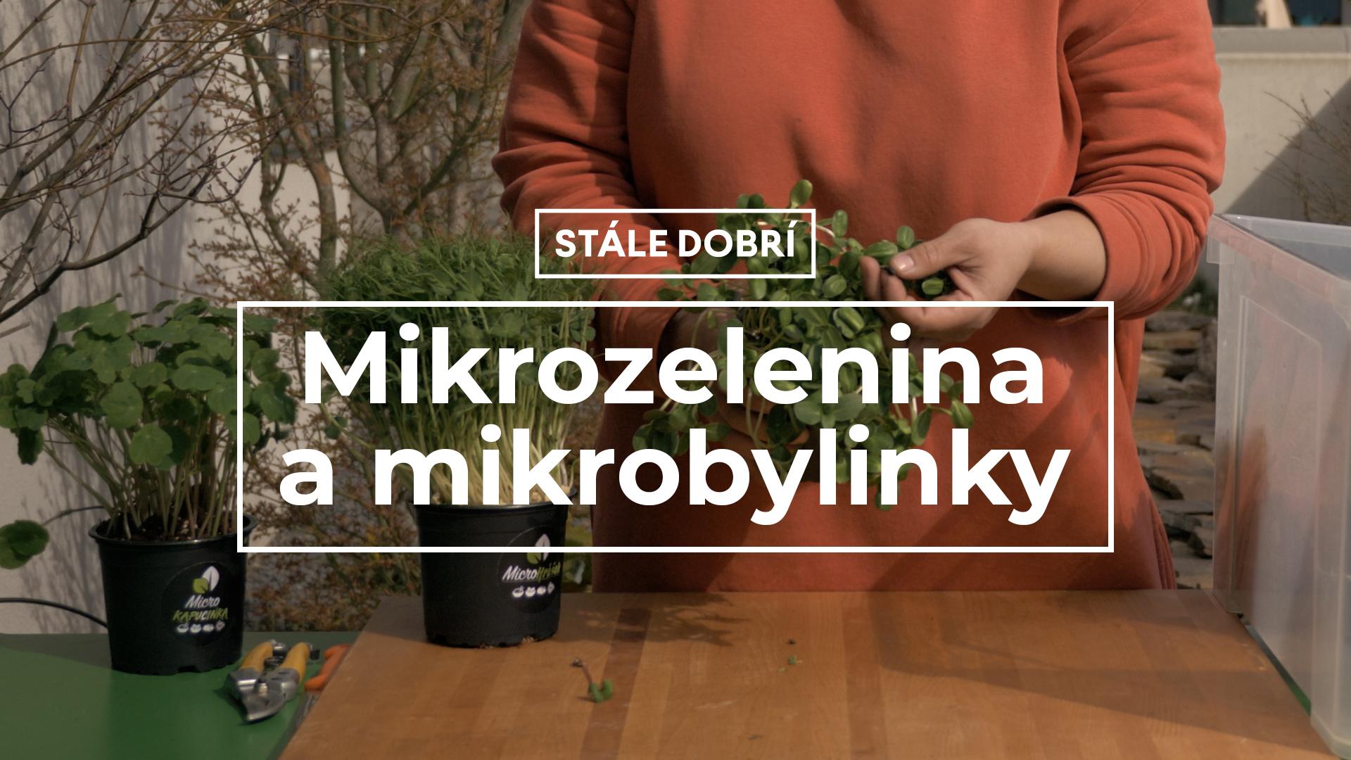 Mikrozelenina a mikrobylinky